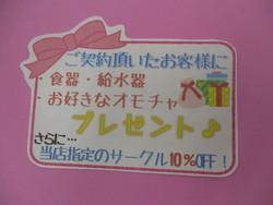 ☆12月キャンペーンのお知らせ☆1