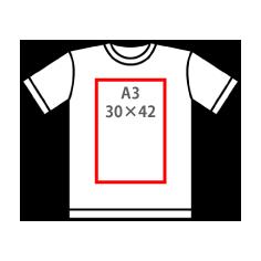 A3(30×42)