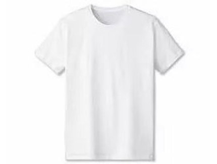 DALUC DM030 スタンダードTシャツ