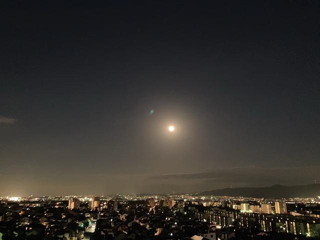 メロディーハイム香里ヶ丘ツインビューベガタワー8階