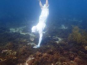 かつて行っていた海女さんによる水中ショーの様子 ※現在海女のショーは行っておりません。