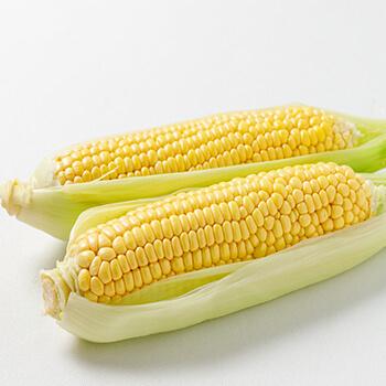 農園で採れた野菜です。