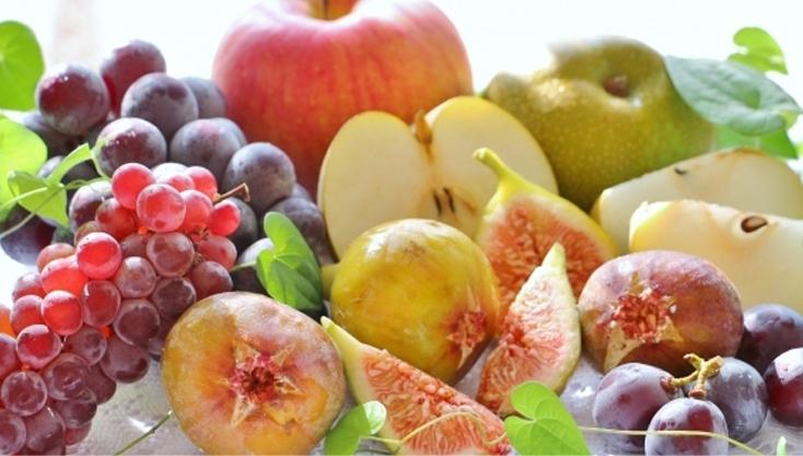 健康と美容を支える82種類の植物