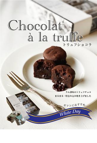 WHITE DAY2021