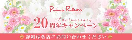 20周年記念キャンペーン開催中!