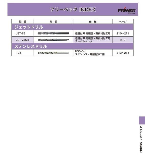 フリーベック(FRIWEG)2
